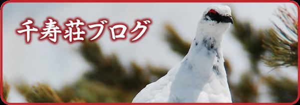 千寿荘ブログ
